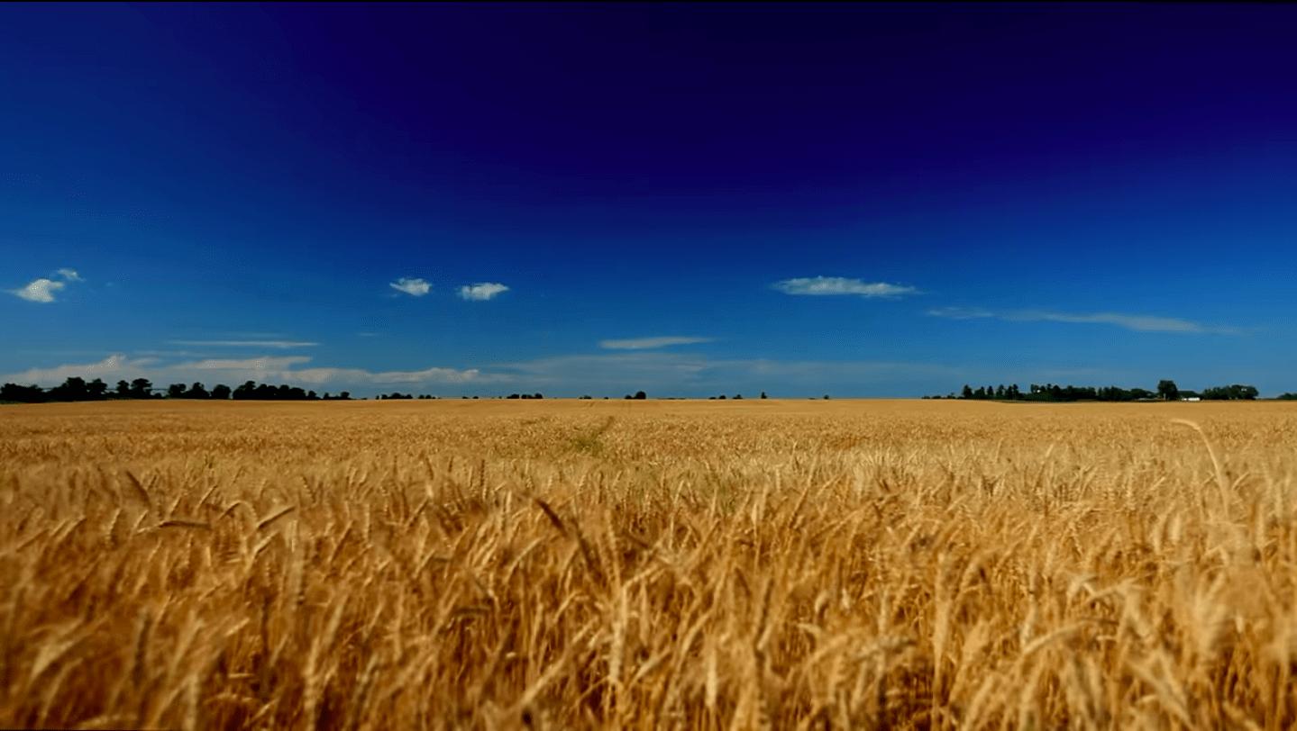 Inspiratiecursus Agro-ecologie – Landwijzer – Vijfdaags – Groep2