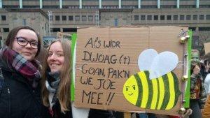 Insecten sterven uit… Jongeren die spijbelen voor het klimaat zijn geboren…
