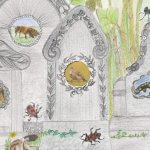 WILD VAN NATUUR 2, meer over biodiversiteit.