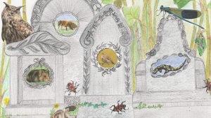 Lees meer over het artikel WILD VAN NATUUR 2, meer over biodiversiteit.