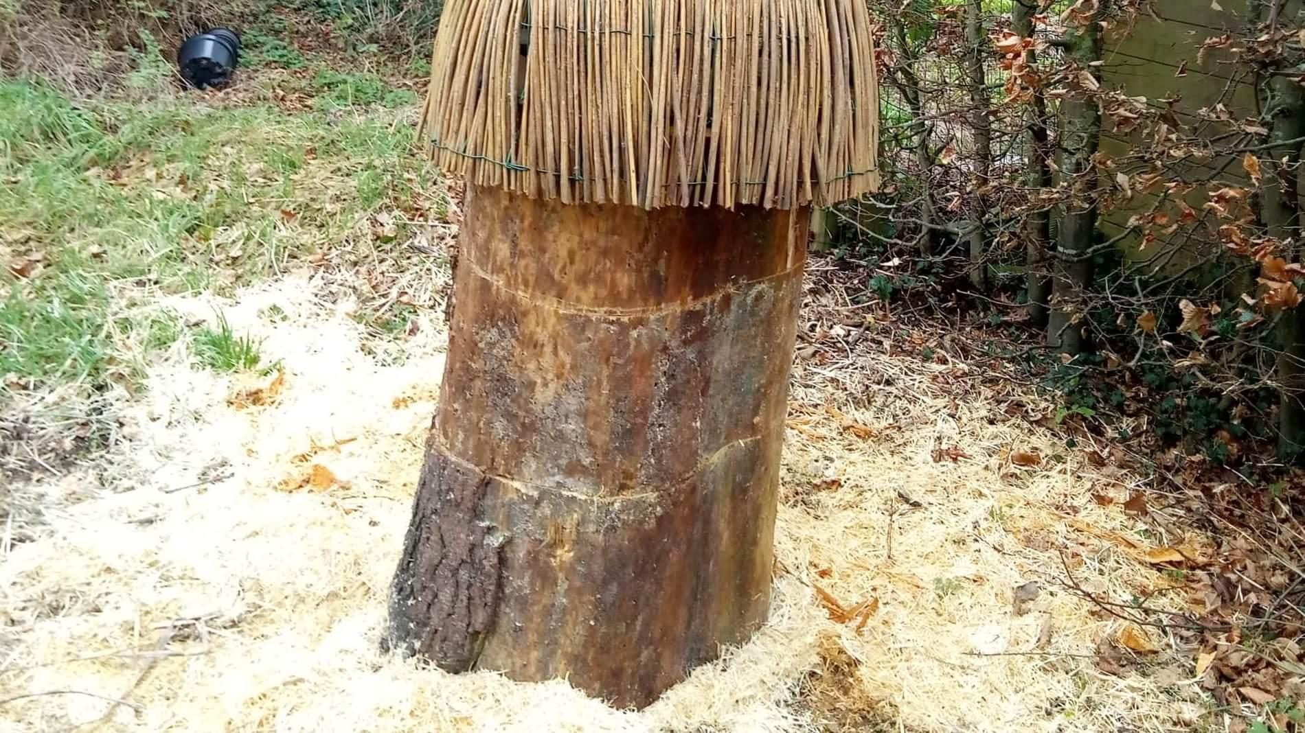 Je bekijkt nu De boomstam en de luie imker